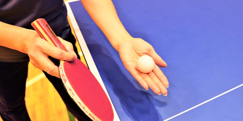 卓球 サークル
